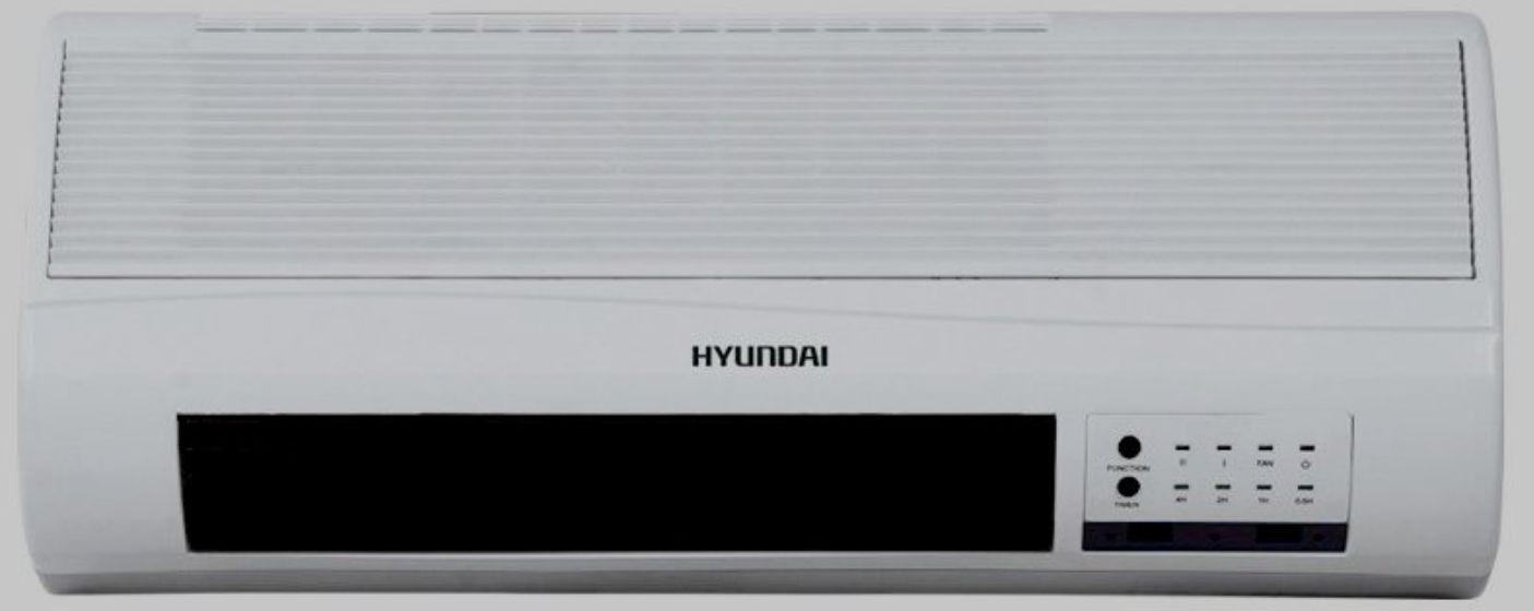 Hyundai H – FH 2 – 20 – UI 887