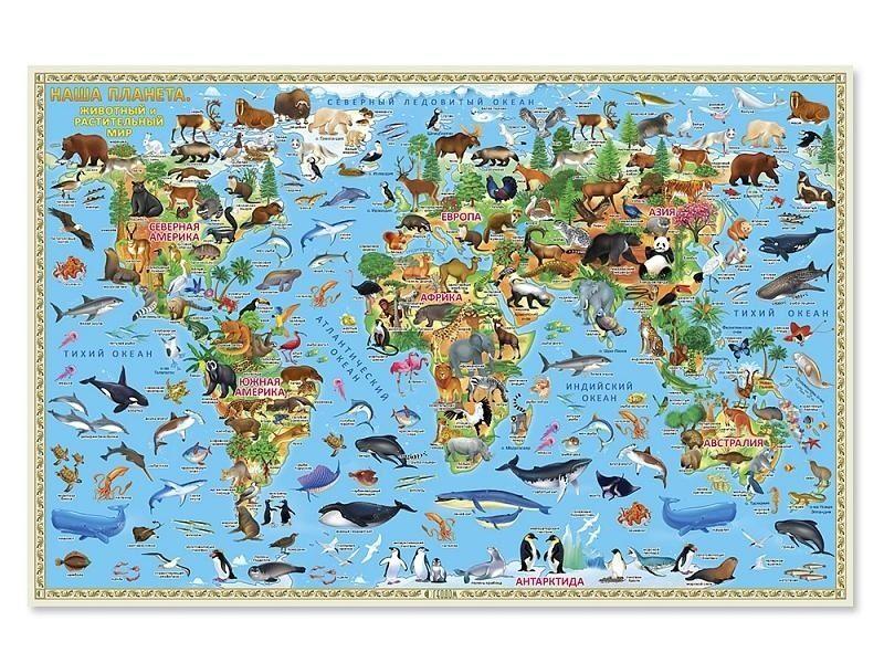 Настенная карта мира