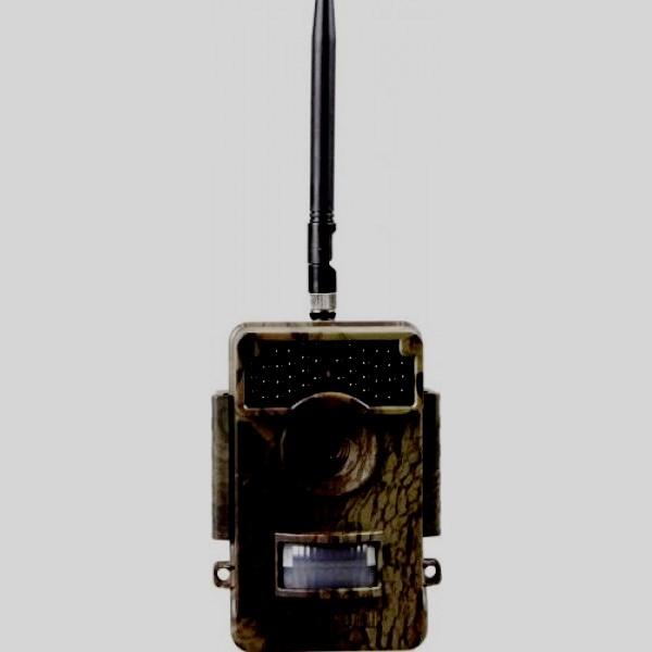 Acorn Ltl – 6511 MG
