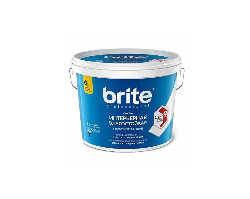 brite Professional
