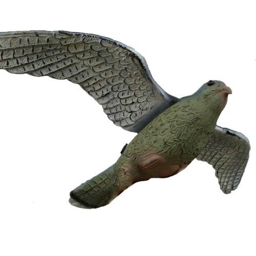 Sititek Орел