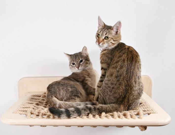 Гамак для кошки настенный «Крепкий сон»