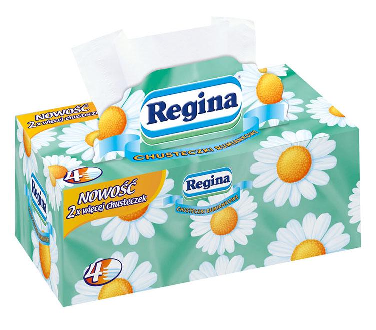 Regina, ромашка